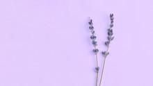 Bouquet Of Violet Lilac Purple...