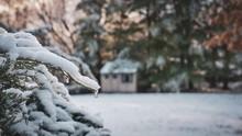 Picturesque Winter Sunrise In ...