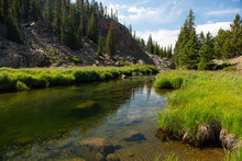 Grassy Mountain River Scene
