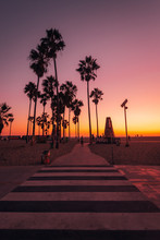 Crosswalk And Palm Trees At Sunset, In Venice Beach, Los Angeles, California