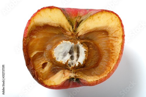 Fotografie, Tablou  badly shrinked apple with moldy core on white background