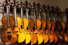 Violins On Display