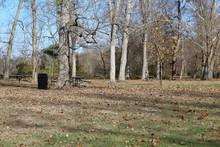 The Picnic Area In The Wooded Area On A Sunny Fall Day.