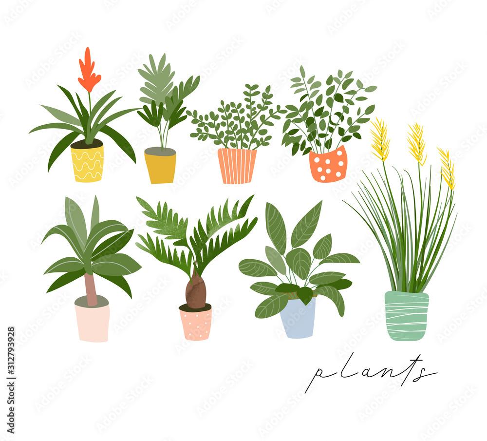kolekcja roślin doniczkowych. sukulenty i rośliny domowe. ręcznie rysowane sztuki wektorowej. Set domowego salowej rośliny kreskówki wektorowy doodle. <span>plik: #312793928   autor: joannarosado</span>