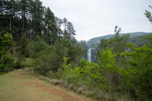 Karkloof Falls. Large Waterfall In A Lush Green Forest In Howick, South Africa. Surrounded By Mountain Cliffs, Trees And A Strong, Powerful Waterfall.