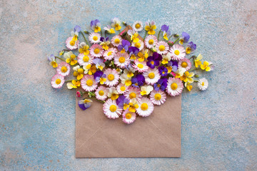 Background greeting card with an envelope with flowers of camomile and pansies on a colored background.