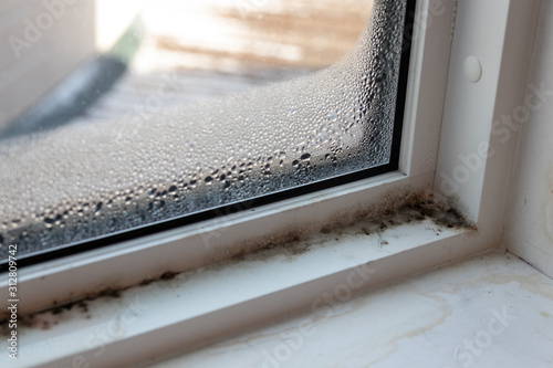 Obraz na plátně Moist mold and fungus in window and frame