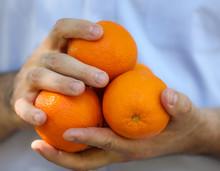 Man's Hands Holding Oranges Ag...