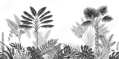 mata magnetyczna Tropical vintage botanical landscape, palm tree, banana tree, plant floral black and white seamless border white background. Exotic jungle wallpaper.