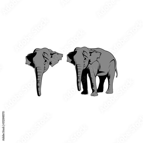 Photo Elephant. Monochrome logo