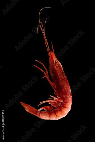 Photo Raw red prwan shrimp on black background