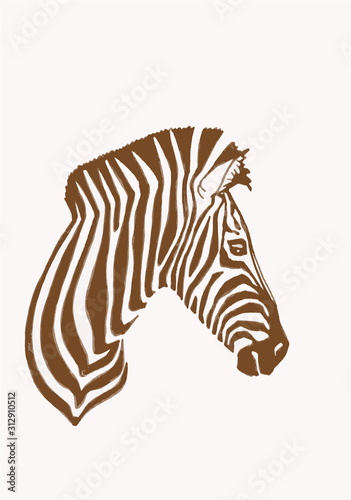 Fotomural Graphical vintage portrait of  zebra , vector sepia illustration
