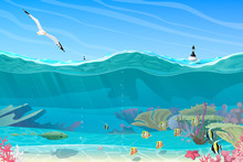 Vector Summer Sea, Ocean, Underwater
