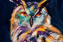 Gufo Reale, Ritratto Di Uccell...