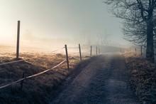 Frostbedeckte Graslandschaft M...