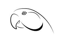 Parrot Head Simple Design. Black Linear Sketch On White Background. Vector Illustration