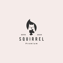 Squirrel Logo Hipster Vintage Retro Vector Icon Is Holding Nuts Illustration In Negative Space