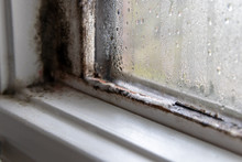 Mold Fungus And Moist In Left Corner Of Window Frame And On Glass