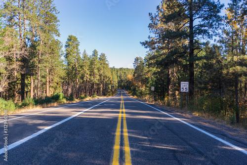 Obrazy powiększające wnętrze   a-road-perspective-in-coconino-national-forest-arizona