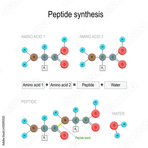 Photo Peptide synthesis