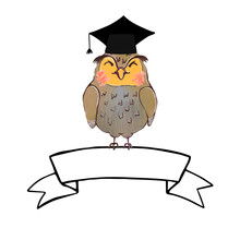 Vector Colorful Illustration Of Cute Owl In Graduate Cap And Ribbon Banner