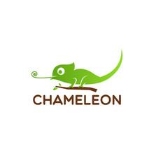 Chameleon Logo Design Vector I...