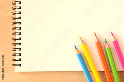 Color pencils Canvas Print