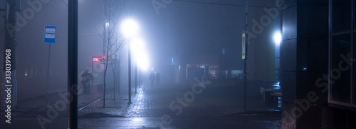 Fotografie, Tablou the night city with the foggy weather conditions, mystery outdoors, fear while w