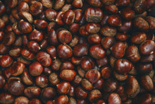 Closeup Unpeeled Uncooked Raw Chestnut Background