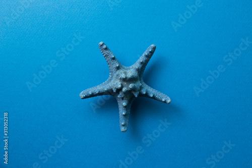 blue-starfish-isolated-on-blue-background-summer-marine-decoration