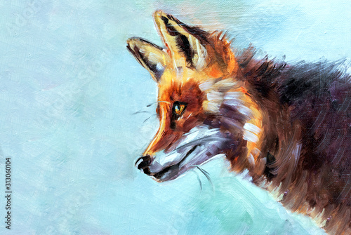 Illustrazione o dipinto ad olio di un animale selvatico, volpe rossa di profilo su sfondo azzurro con texture #313060104