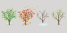 Vector Set Of Four Seasons Tre...