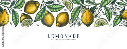 Ink hand drawn citrus fruits banner design. Vector lemons background with fruits, flowers, seeds, leaves sketches. Perfect for banners, menu, invitations, prints. Lemon outlines template