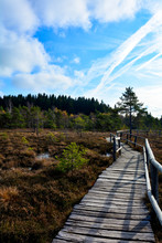 Black  Moor With Wooden  Path  In The Rhön, Bavaria, Germany