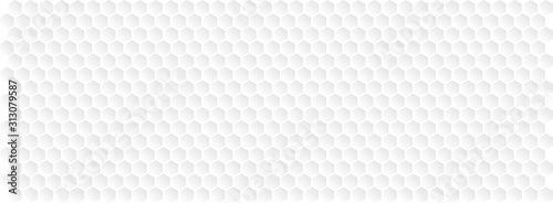 Photo Hexagons / honeycomb