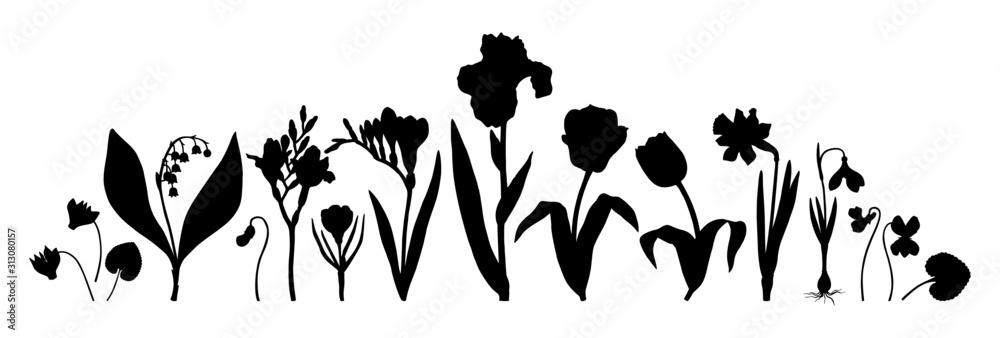 Kolekcja wiosennych kwiatów. Zestaw ręcznie rysowane sylwetki kwiatowy. Botaniczne ilustracje tulipanów, krokusów, frezji, irysa, narcyza, przebiśniegów, cyklamenu. Idealne do karty, zaproszenia, logo, mongram