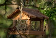 Birdhouse On A Tree