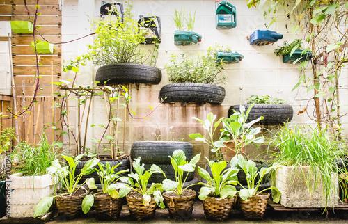 Obraz garden in urban - fototapety do salonu