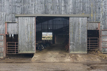 A Barn Full Of Cattle At A Wor...