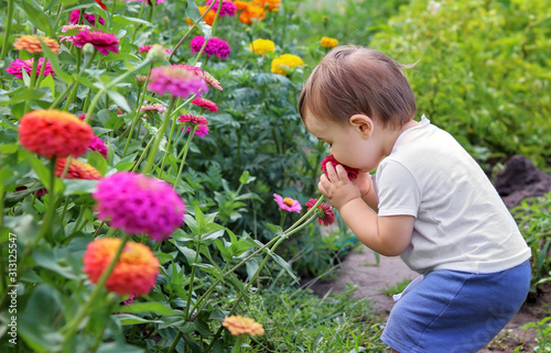 Photo Cute little baby boy enjoying smelling flower with closed eyes