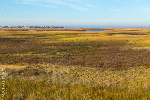 Looking over grassy wetlands at Bay Side of Galveston Island with Housing Area i Canvas