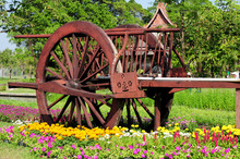 Old Wooden Cart With Flowers.