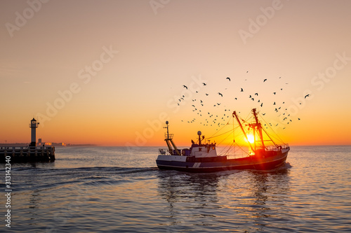 Fototapeta Fishing boat in front of the old wooden pier of Nieuwpoort (Belgium) at sunset