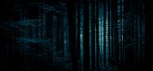 Dense Dark Forest Background. ...