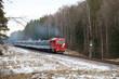 locomotive rides through the forest