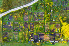 Aerial View Of Rows Of Green Countryside Gardens