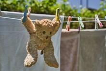 Teddy Bear Hanging On A Clothesline