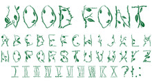 Beautiful Font In The Elven Style Of Twigs, Leaves And Flowers.