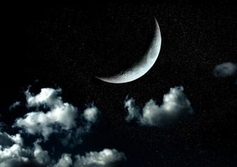 Obraz na płótnie Canvas The moon in the night sky