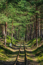 Empty Narrow Gauge Railroad Th...